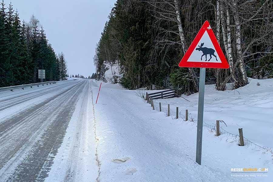 Norwegen-im-Winter
