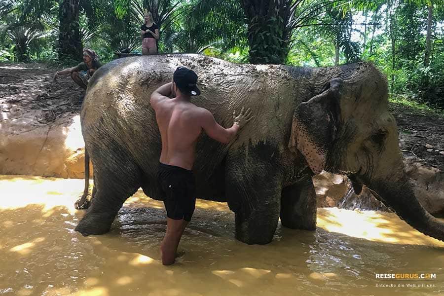 Elefanten Tour Thailand
