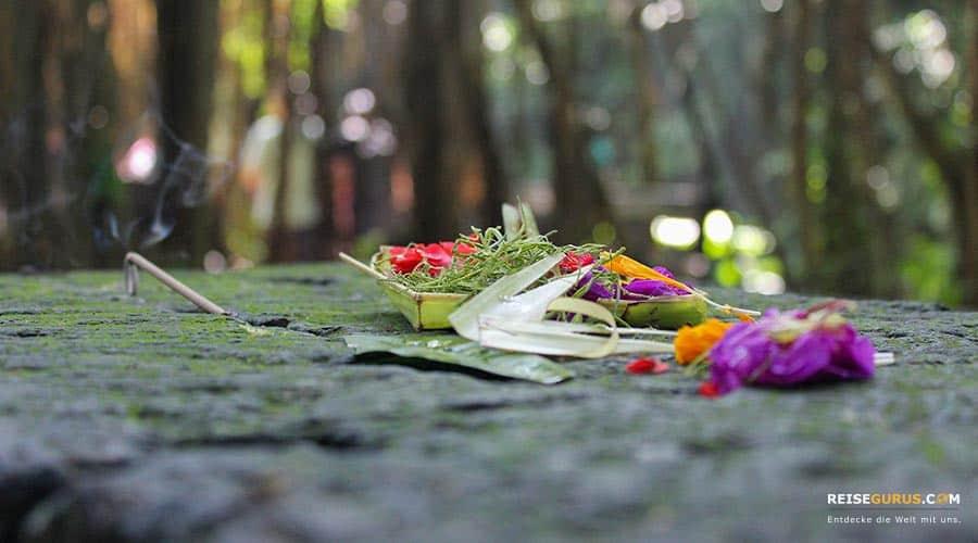 Wat Chalong Tempel Opfergaben