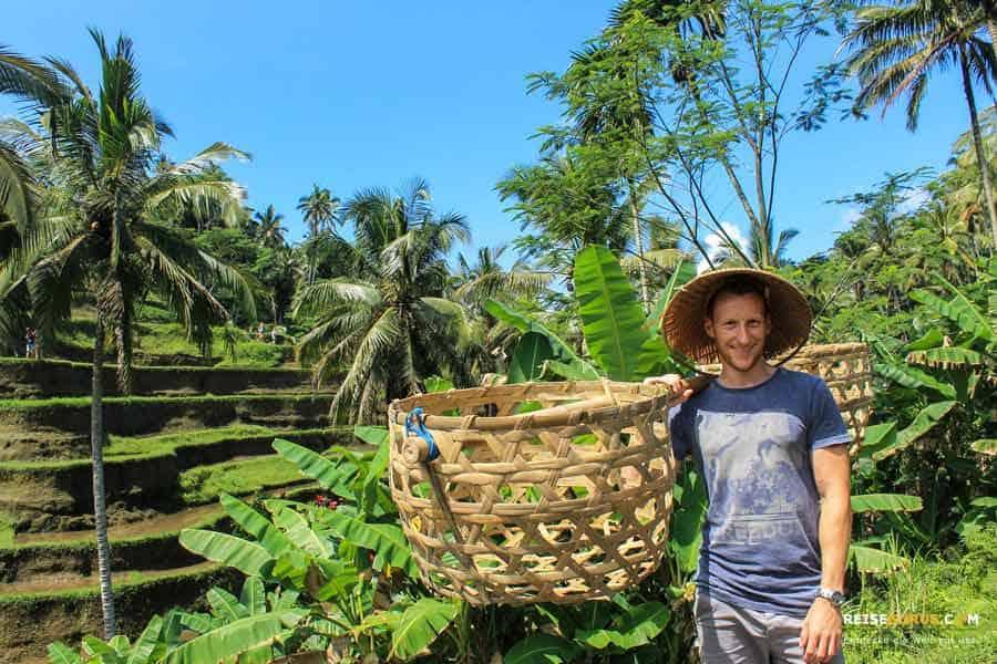 Top 4 Reisterrassen und Reisfelder auf Bali