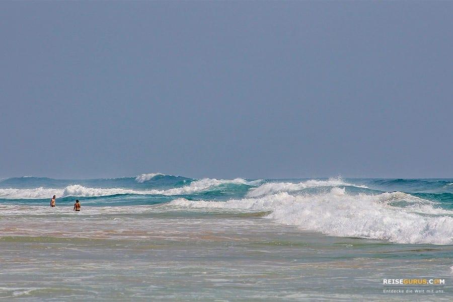 Haiattacken an den Surfer Hotspots in Bali