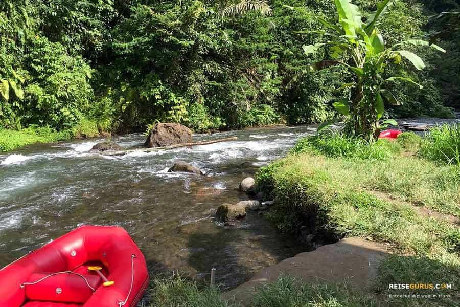 Bali Ausflüge Rafting