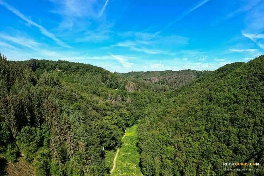 Fußweg zur Geierlay Hängeseilbrücke – Geierlayschleife