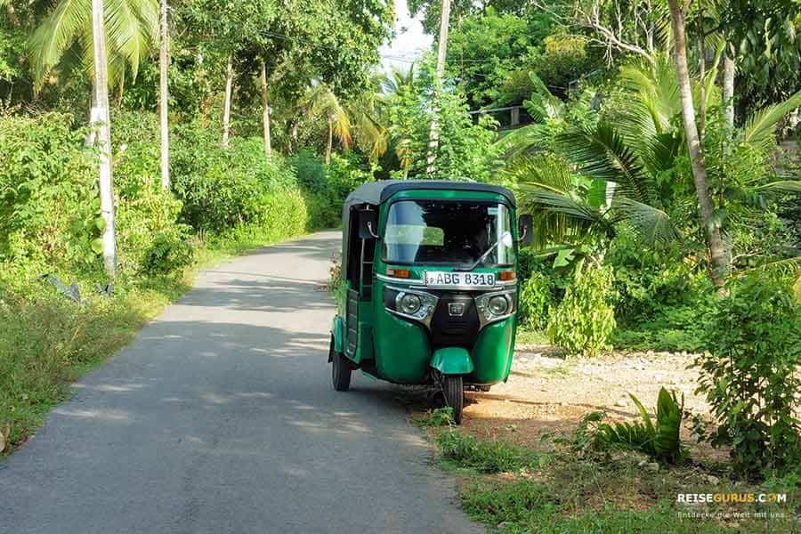 Trinkgeld im Sri Lanka Urlaub