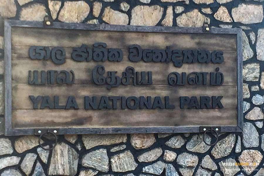 Yala Nationalpark Öffnungszeiten und Eintritt