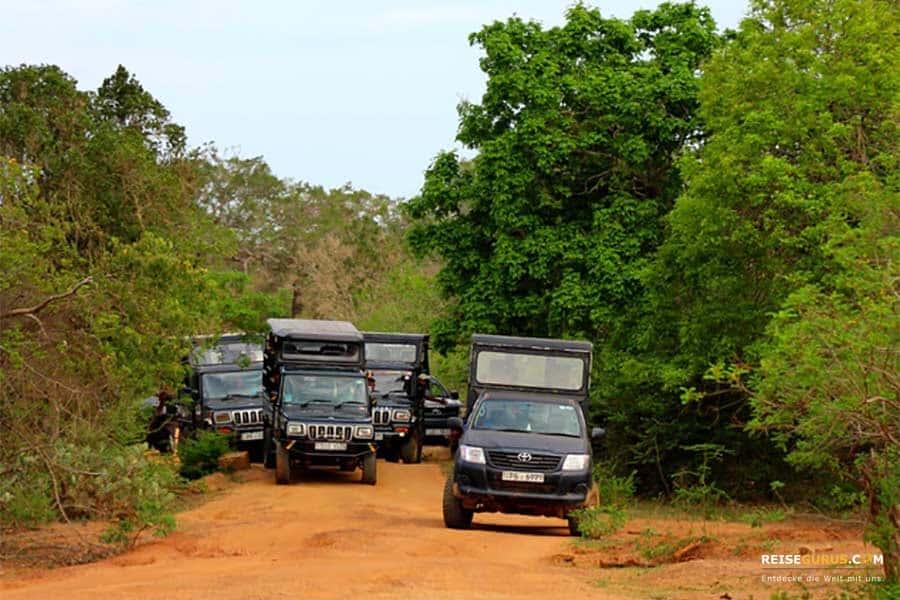 Anreise zum Yala Nationalpark