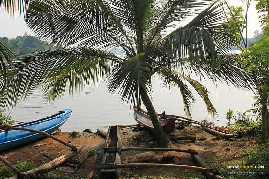 Koggala Lake Sri Lanka