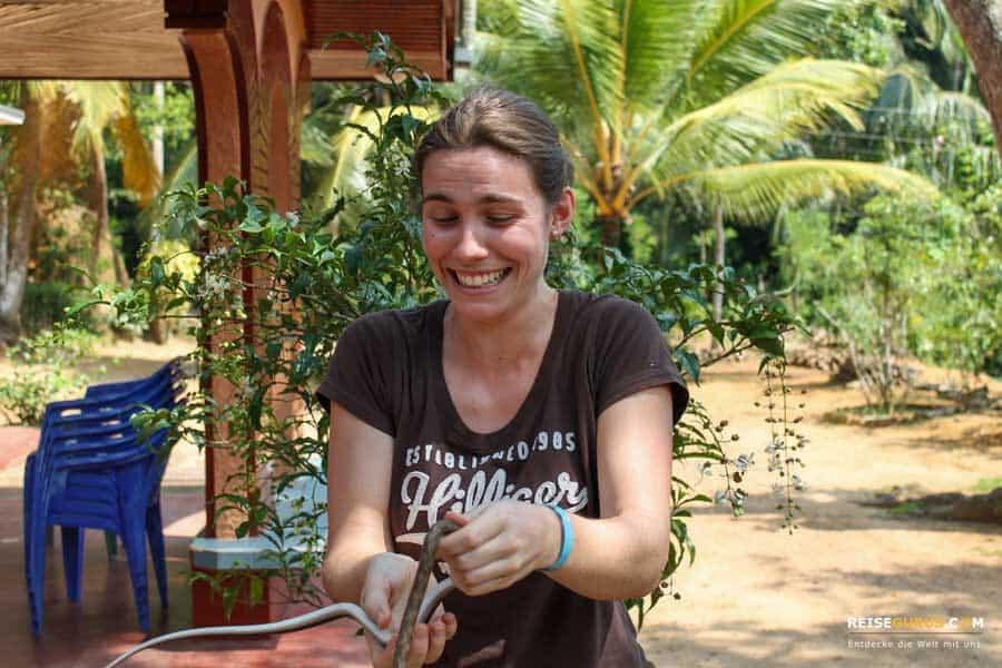 Sri Lanka Tuktuk Tour zur Schlangenfarm