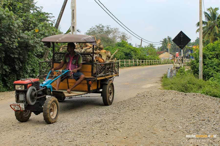 Sri Lanka Tuktuk Tour Tipps