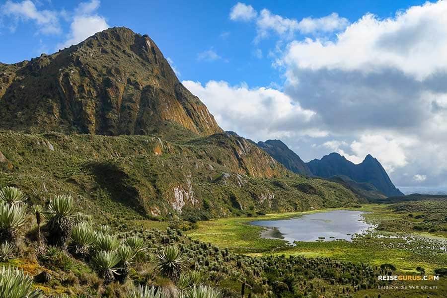Paramo Sumapaz Nationalpark