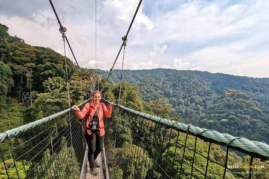 Canopy Walk Nyungwe Regenwald