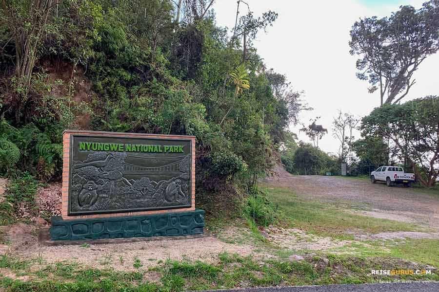 Nyungwe Nationalpark in Ruanda Öffnungszeiten