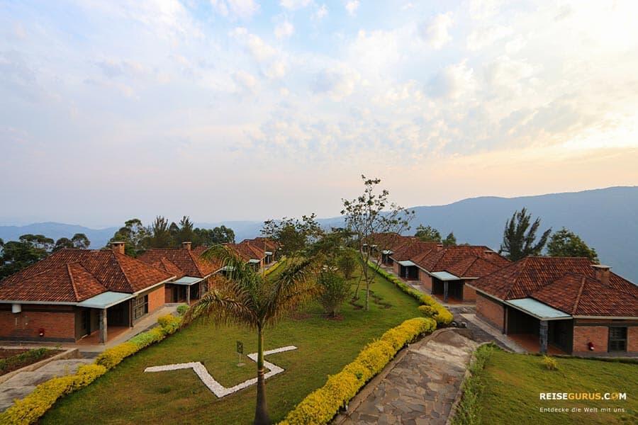Nyungwe Nationalpark Ruanda
