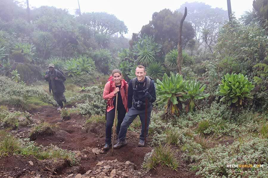 beste reisezeit ruanda