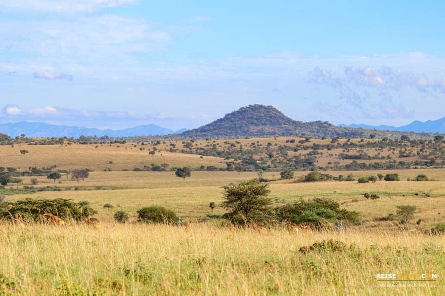 Kidepo Nationalpark Highlights