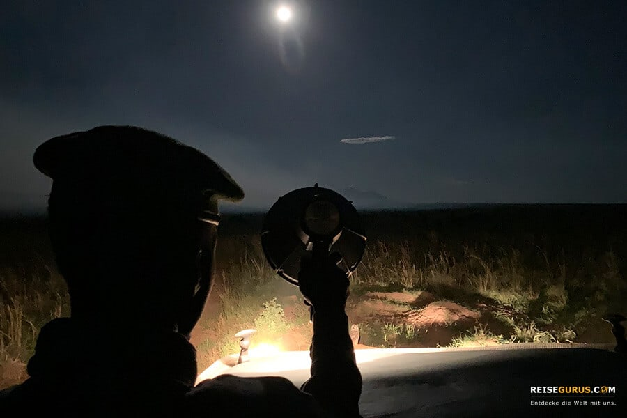 Kidepo Valley Nationalpark Nachtsafari