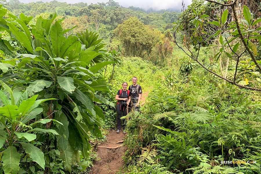 Mount Bisoke Wanderung