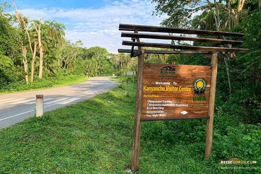 Schimpansen Trekking Permits Preise