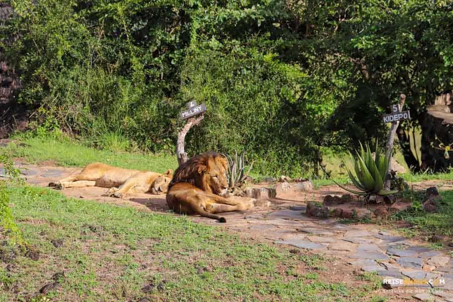 Sicherheit Kidepo Valley Nationalpark