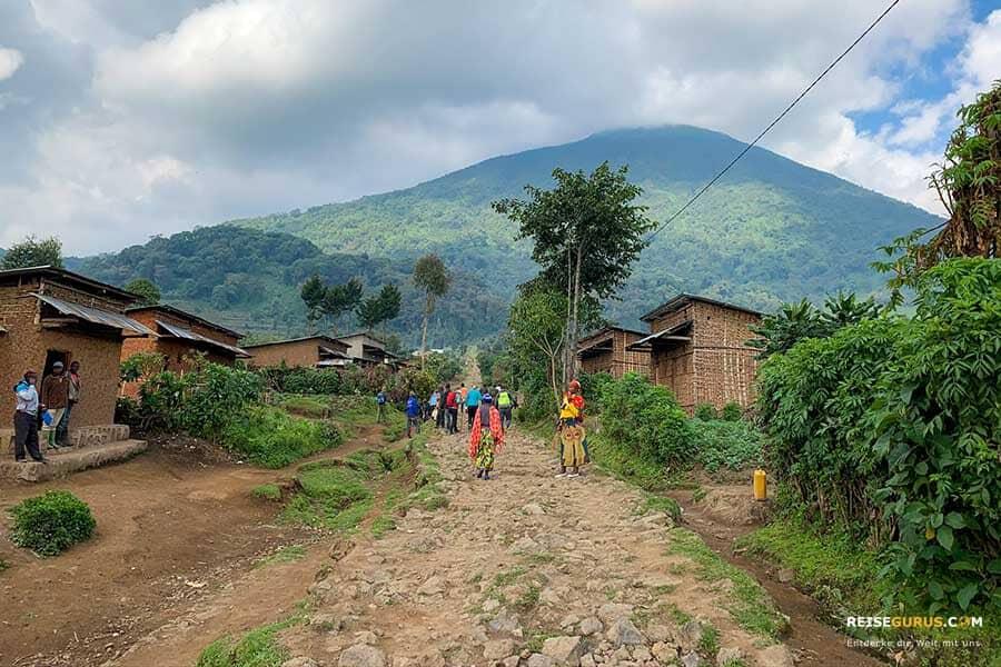 7 Tipps für den Volcanoes Nationalpark Ruanda