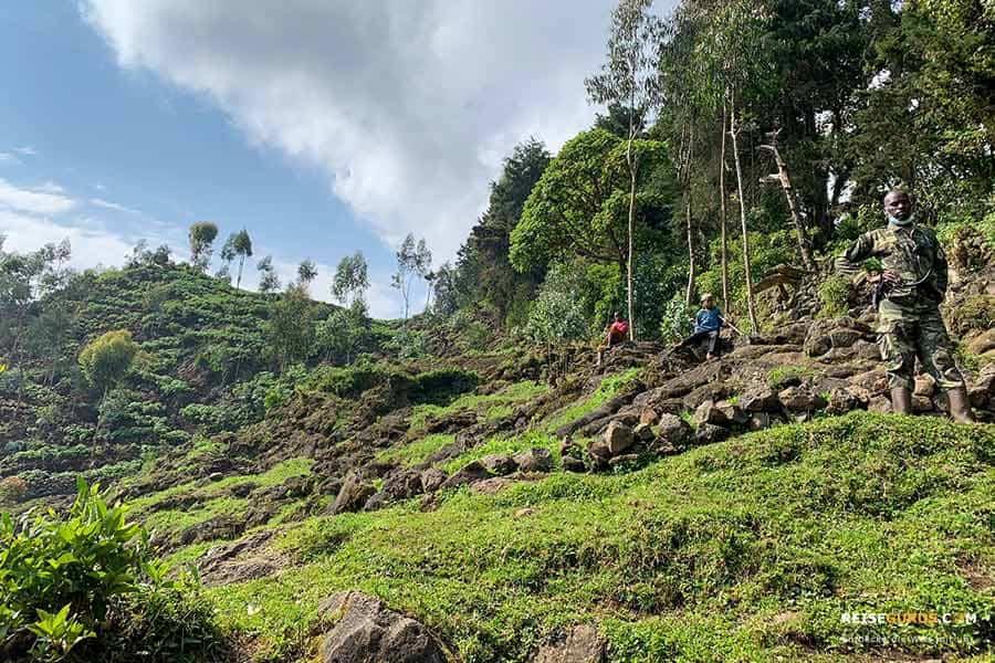 Volcanoes Nationalpark Sicherheit