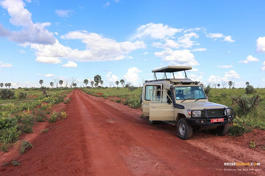 Nationalpark Uganda