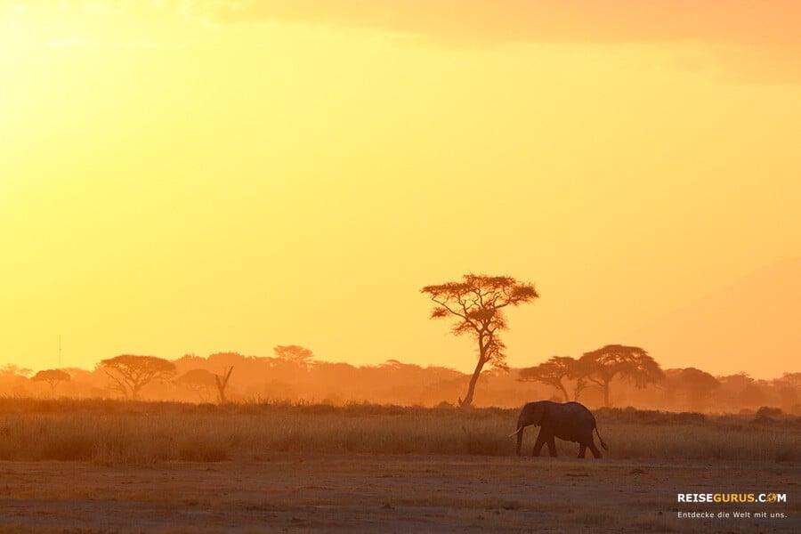 Sonnenuntergänge in Kenia