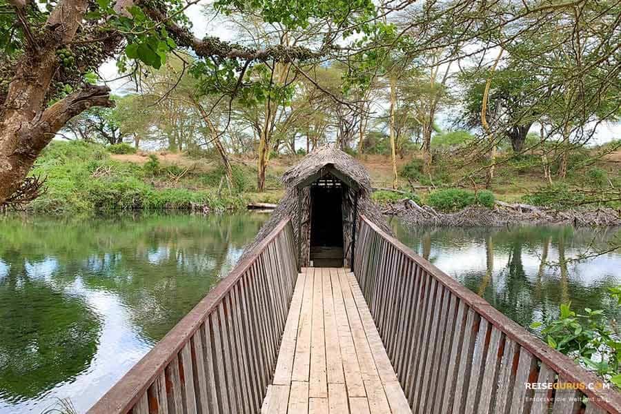 Mzima Springs Walk