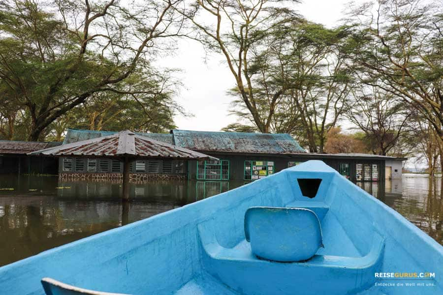 Lake Naivasha Boot