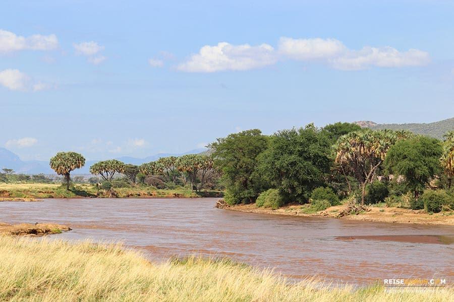 Safari im Samburu Nationalpark