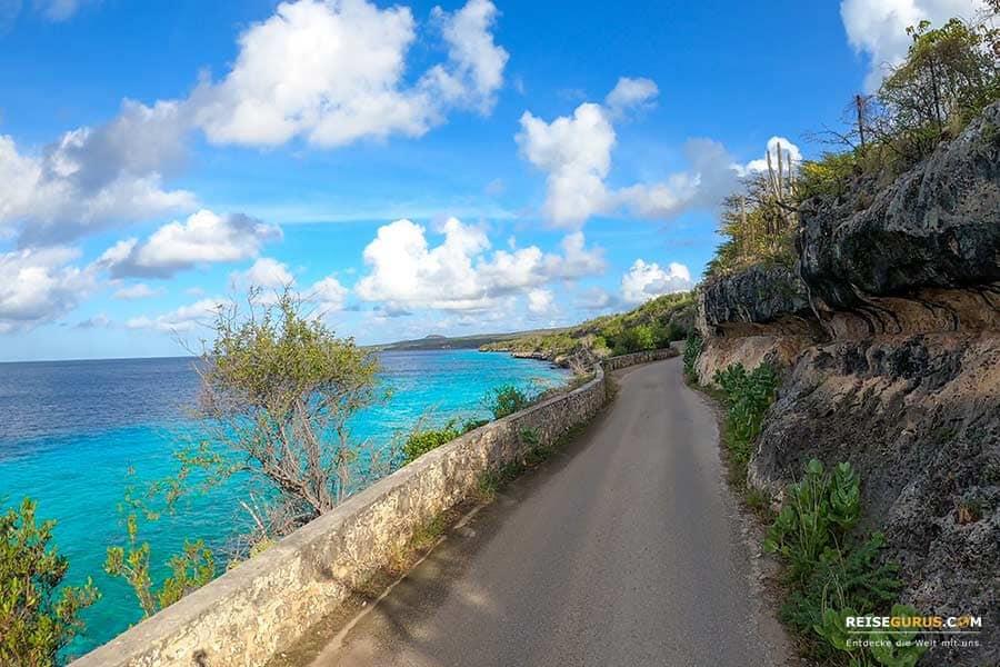 Top Bonaire Sehenswürdigkeiten