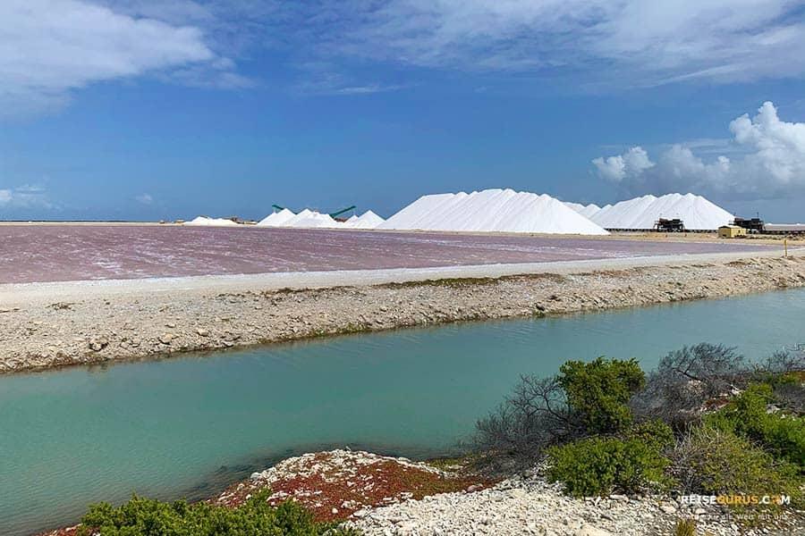 Top 10 Bonaire Sehenswürdigkeiten