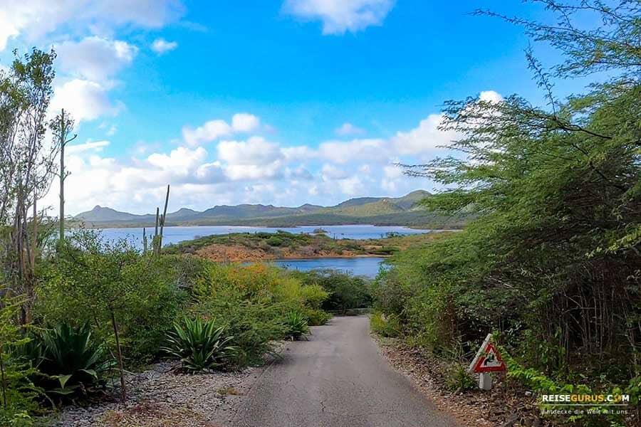 Nationalpark Bonaire
