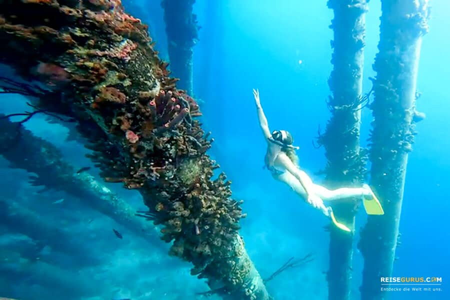 Schnorchelspots Bonaire