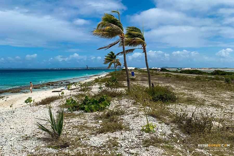 die besten Strände auf Bonaire