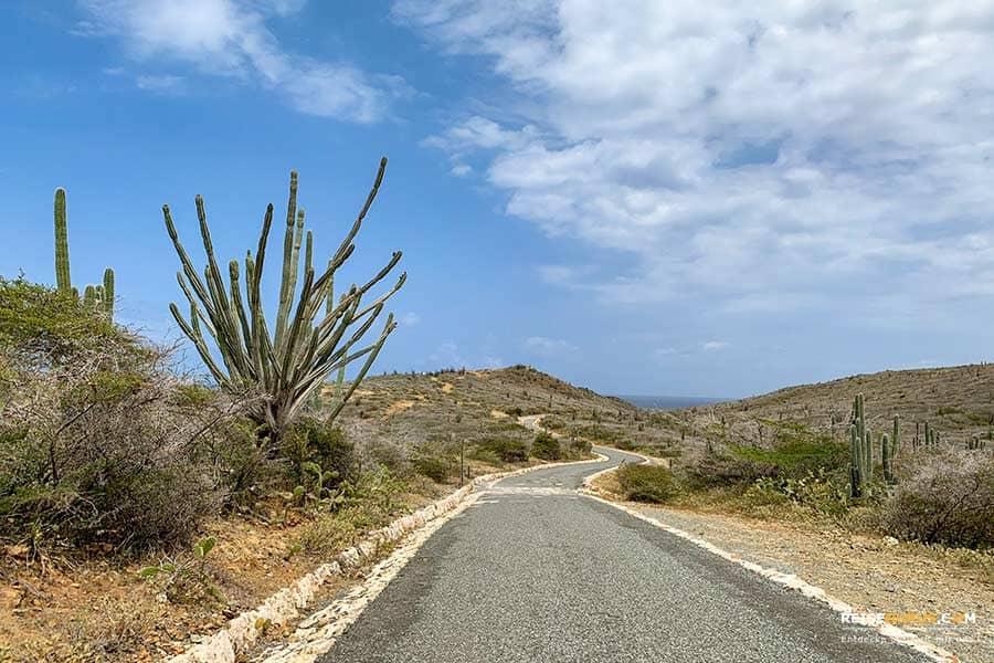 Arikok Nationalpark Aruba Autorouten