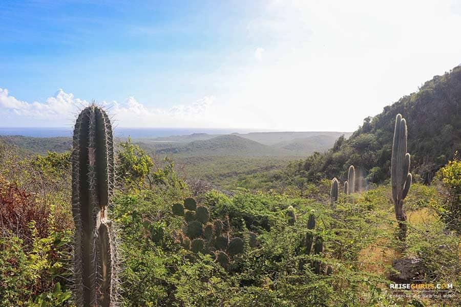 Christoffel Nationalpark Highlights